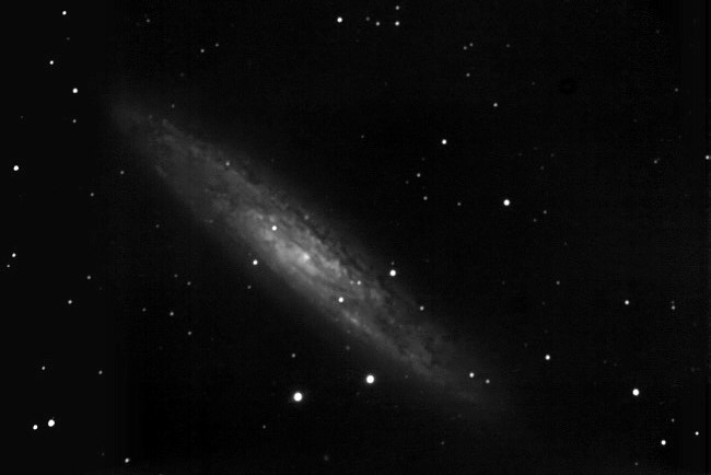 NGC 253 im Sculptor
