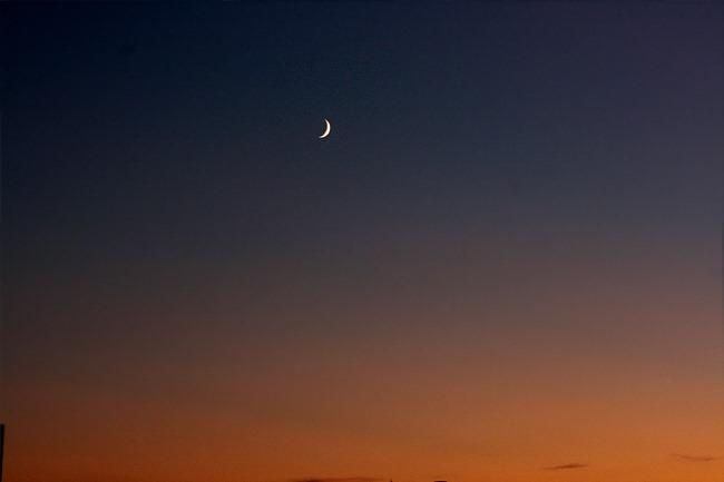 Junge Mondsichel am Abendhimmel